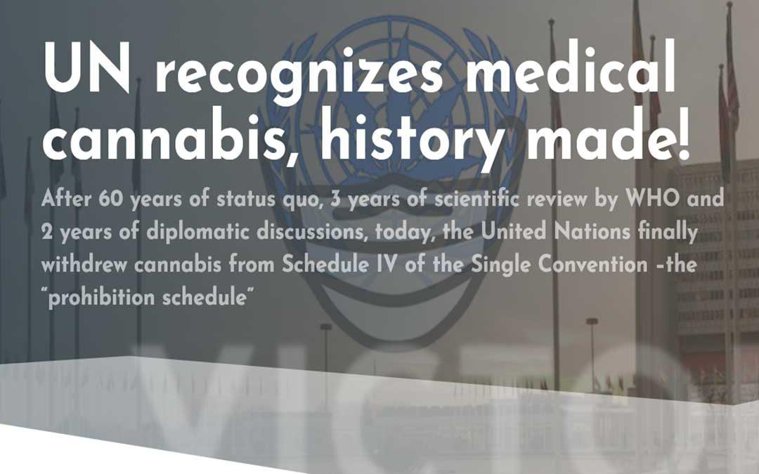 Press release — History made today: UN recognizes medical cannabis